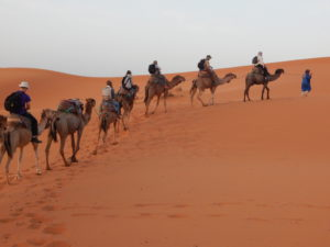 Safari trip to Sahara desert