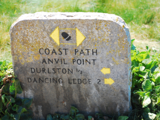 coast path, Durlston Country Park